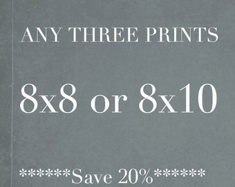 Save 20%- Any Three 8x10 or 8x8 Photographs, Discounted Wall Art Set