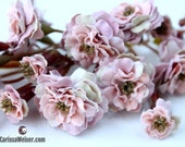 Primroses - TWO Sets Artificial Pom Pom Roses - Dusty Pink - SMALL FLOWERS - Silk Flowers