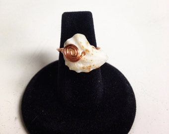 Double Kittens Paw Shell Ring Size 6