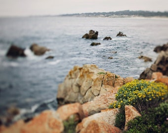 """California Photography - 17 Mile Drive - SoCal Blur - California Landscape Photography - PCH - Nautical Beach Decor - Highway 1- """"17 Miles"""""""