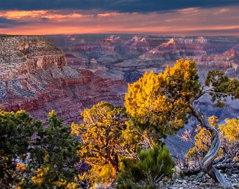 Grand Canyon South Rim at Sunset at the National Park in Arizona No.426 Color Wall Decor Fine Art Nature Landscape Photograph