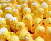 Fondant Baby Chicks Cupcake Toppers ( 8 Chicks, 1 Message Plate as Happy Easter etc)