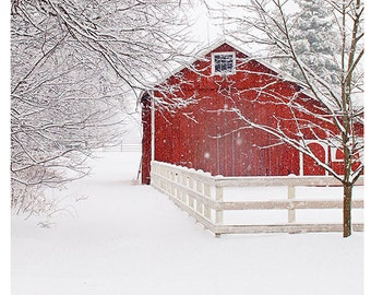 Winter Landscape, Photo, Country Home, Red Barn in Snow, nature photography, print, snow, winter, red barn, pines, country, rustic