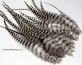 Craft Feathers Big Grizzly Feathers Thick Feathers Striped Feathers Zebra Feathers Black White Feathers Natural Feathers Rooster Saddle, 24