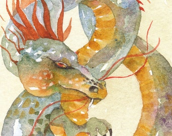 Belleruth's DRAGON  ACEO watercolor PRINT giclee myth mystical - Free Shipping