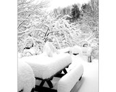 Snow Covered Deck, Maine Snow Storm, Snow Laden Picnic Table & Deck, got snow, Maine Snowy Winter Landscape, FREE SHIPPING USA