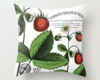Throw Pillow Cover - Strawberry Fruits and Flower Vintage Ephemera - 16x16, 18x18, 20x20 - Pillow case Original Design Home Décor by Adidit