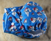SassyCloth one size pocket diaper with puffy airplanes on blue PUL print. Made to order.