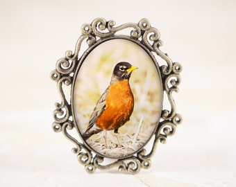 Robin Bird Brooch, American Robin Brooch Pin, Spring Bird Jewelry Pin, Woodland Bird Photography, Red Robin