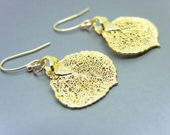 24kt Gold Plated Aspen Leaf Earrings