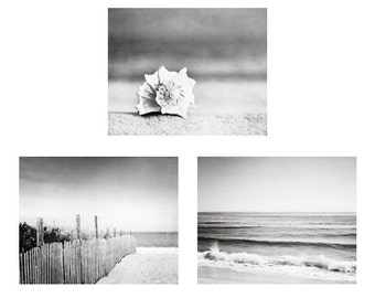 Black and White Beach Photo Set - Three 3 seashell ocean photography grey gray gallery wall coastal prints nautical artwork 11x14, 8x10, 5x7