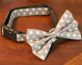 "READY To Ship -1"" Dog Collar Only no bow tie - 3 options available - Gray Polka Dots"