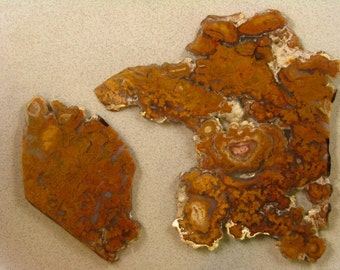Browns In Clear Agate Youngite Slab RS0135