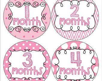 Pink Monthly Baby Girl Stickers, Pink Month to Month Stickers, Pink Photo Prop Stickers , Baby Stickers (160)