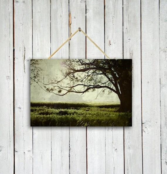 The Reading Tree - 20x30 Print - Tree wall decor- Tree wall art - Green wall decor - Green wall art.