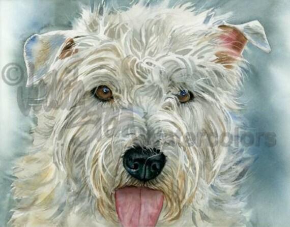 "Glen of Imaal Terrier, AKC Terrier, Pet Portrait Dog Art, Giclee Watercolor Painting Print, Wall Art, Home Decor, ""The Glen"" by Judith Stein"