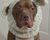 Dog Snood Lamb Crochet Made to Order