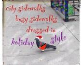 Christmas Card - New York City Pigeon