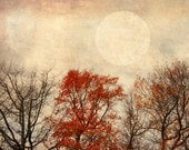 Full moon autumn harvest photograph fall rust red orange home decor - MaritebeePhotography