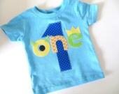 Monster Birthday Shirt First Birthday Boys Shirt or Onesie gift photo prop funny aqua, blue, orange, lime