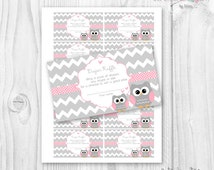 Baby Shower owl diapers raffle card Printable pink and grey chevron