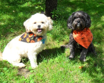 Halloween Dog Bandana, Cat Bandana - Pumpkin or Spider, Black or Orange