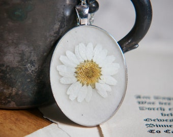 pressed flower necklace white daisy dried flower pendant in resin. red green christmas.