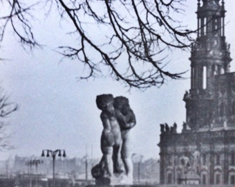 Original Antique Photograph The Cherubs