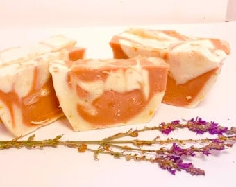 Guest Soap-  EUCALYPTUS GRAPEFRUIT -100 % Natural Handmade Cold Process Soap Savon From Scratch- SLS and Paraben Free
