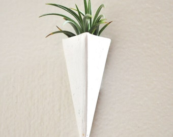 Trending Wall Mount Mini Air Plant Planter  White and Tillandsia Plant