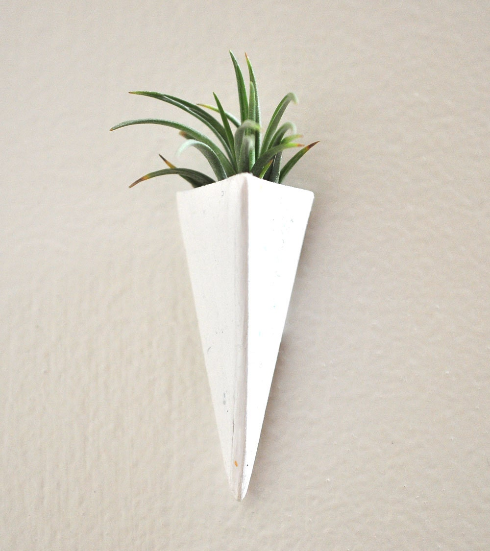No plant wall mount mini air plant planter white by claydelys1 for Air plant planters