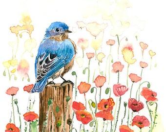 Art print - Bluebird in a poppy field, in watercolor