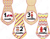 Boy Monthly Baby Stickers, 1 to 12 Months, Monthly Stickers, Baby Age Stickers,  Firefighter Ties