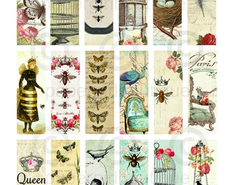 Birds, Bees and Butterflies Vintage Ephemera 1x3 Slide, Microscope Slide Images ....Instant Digital Download