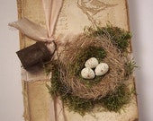"Repurposed Vintage-y ""Bird Watchers"" Book with Birdnest and Quail Eggs and Rusty Bell"