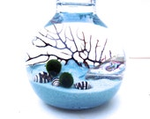 SALE Marimo terrarium, Japanese Moss Ball with healing crystals, abalone shells and zebra shells, spring wedding favor