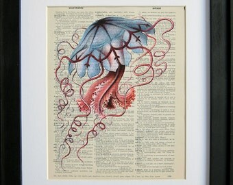 Blue Jellyfish by Ernst Haeckel printed on a page from an antique dictionary