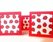 Red Lady Bug Lunch Box Notes, Mini Cards Set of 8