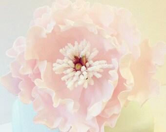 Sugar Peony Flower