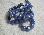 Cultured Freshwater Pearl (dyed), 15 inch Strand, Blue, 7mm to 8mm, Potato Beads, Freshwater Pearls, Blue Freshwater Beads #6857