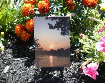 NatureSnaps!  Sunsets :)
