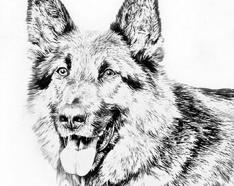Custom portrait dog - Custom Pet Portrait - Dog Sketch - Custom Pet Art - Dog lover drawing - German Shepherd - sketch from photo - Alsatian
