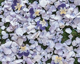 WEDDING HYDRANGEA™, Confetti Petals -  10 cups,  Something Blue, for fairy tale endings