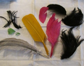 Vintage FEATHER Lot Old MILLINERY HAT Trims