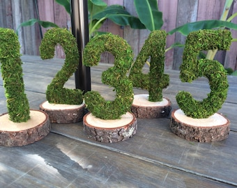 Moss Covered Table Numbers, Moss Wood Number