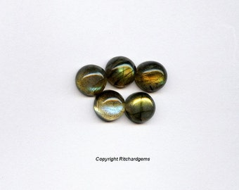Natural 8 mm Round Cut Labradorite Cabochon For One