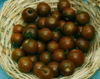 Organically Grown, non-GMO, Heirloom Brown Berry Cherry Tomato Seed