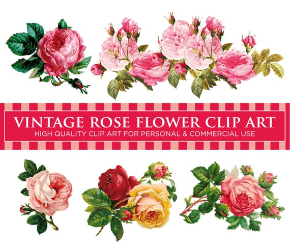 5 VINTAGE ROSE FLOWERS Pack No. 1 Floral Digital Clip Art