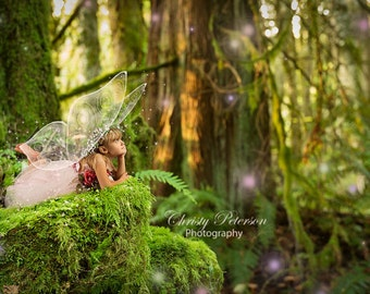 Mossy Stump and a Forest Fantasy Digital Background for Fairy Photography