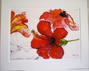 Red Hibiscus  Giclee print.
